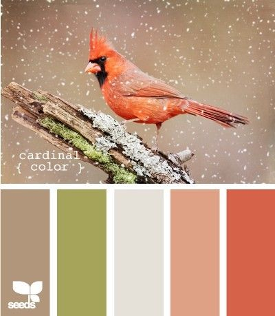 Cardinal Color Pallet for-the-home
