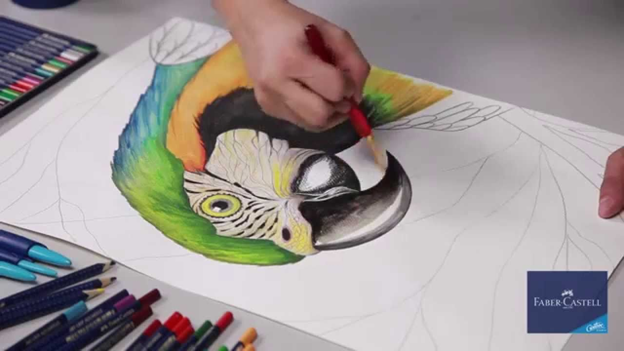 Faber Castell Lapices De Color Acuarelables Art Grip Drawings Faber Castell Colorful Bird