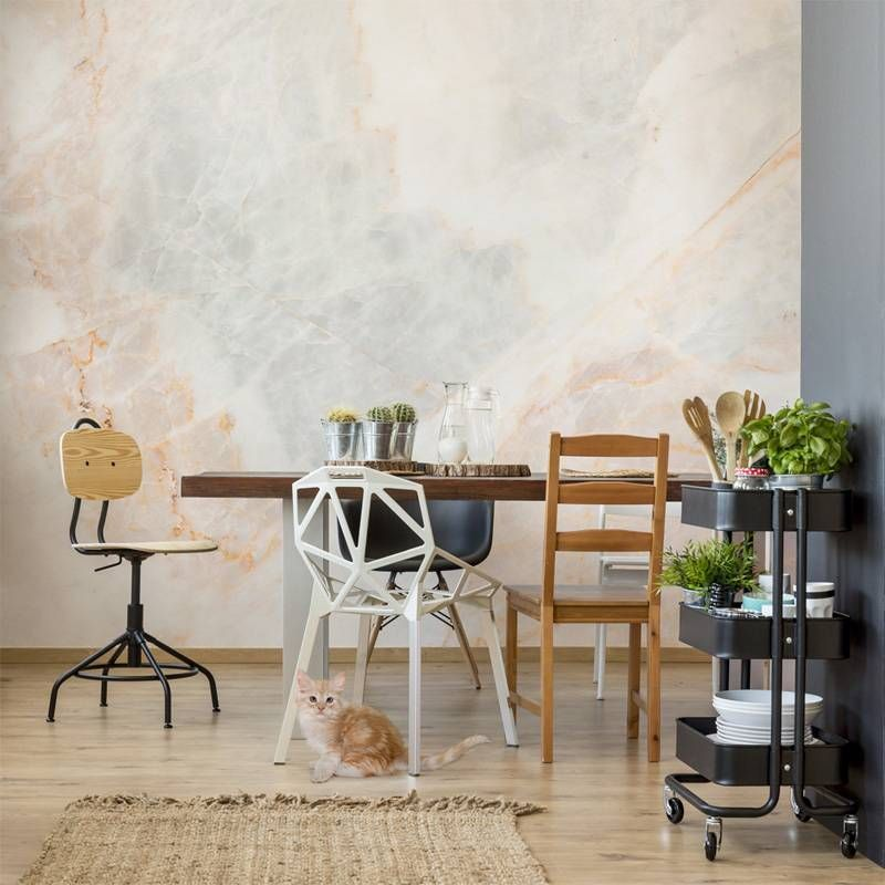 Subdued dining room Kitchen Contemporary Wall Murals