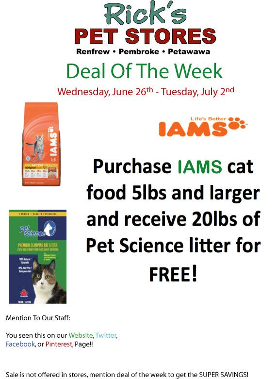 A great deal, for those great cat owners.