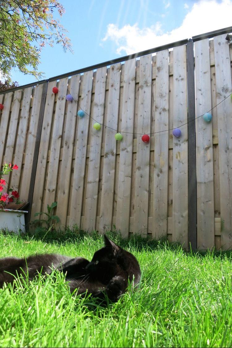 The revolutionary cat containment system designed for DIY