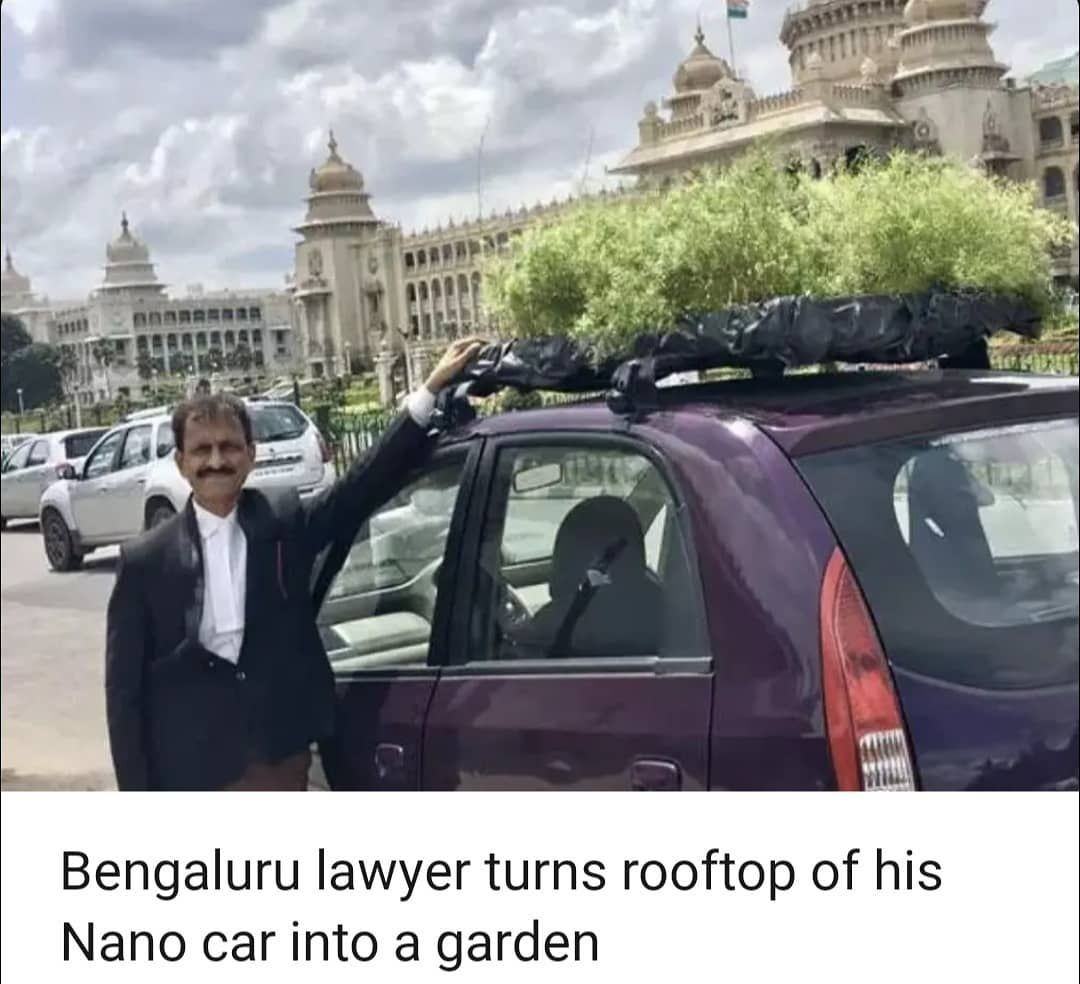 In A Bid To Revive Bengalurus Garden City Identity A Lawyer Is Providing Some Good Food For Thought By Challenging Where A Gr Next Garden Tulsi Holy Basil Car