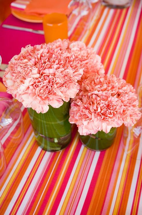 Alternative To Rose Garden: Carnations' Hardy, Full Blooms Are An Inexpensive