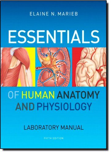 Download free Essentials of Human Anatomy & Physiology Laboratory ...