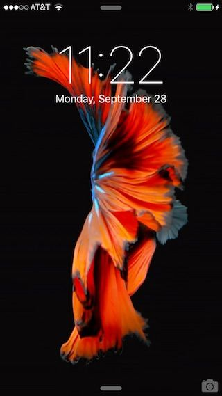 How To Set And Use Live Wallpapers On Iphone 6s And Iphone 6s Plus Live Wallpapers Iphone 6s Wallpaper Iphone
