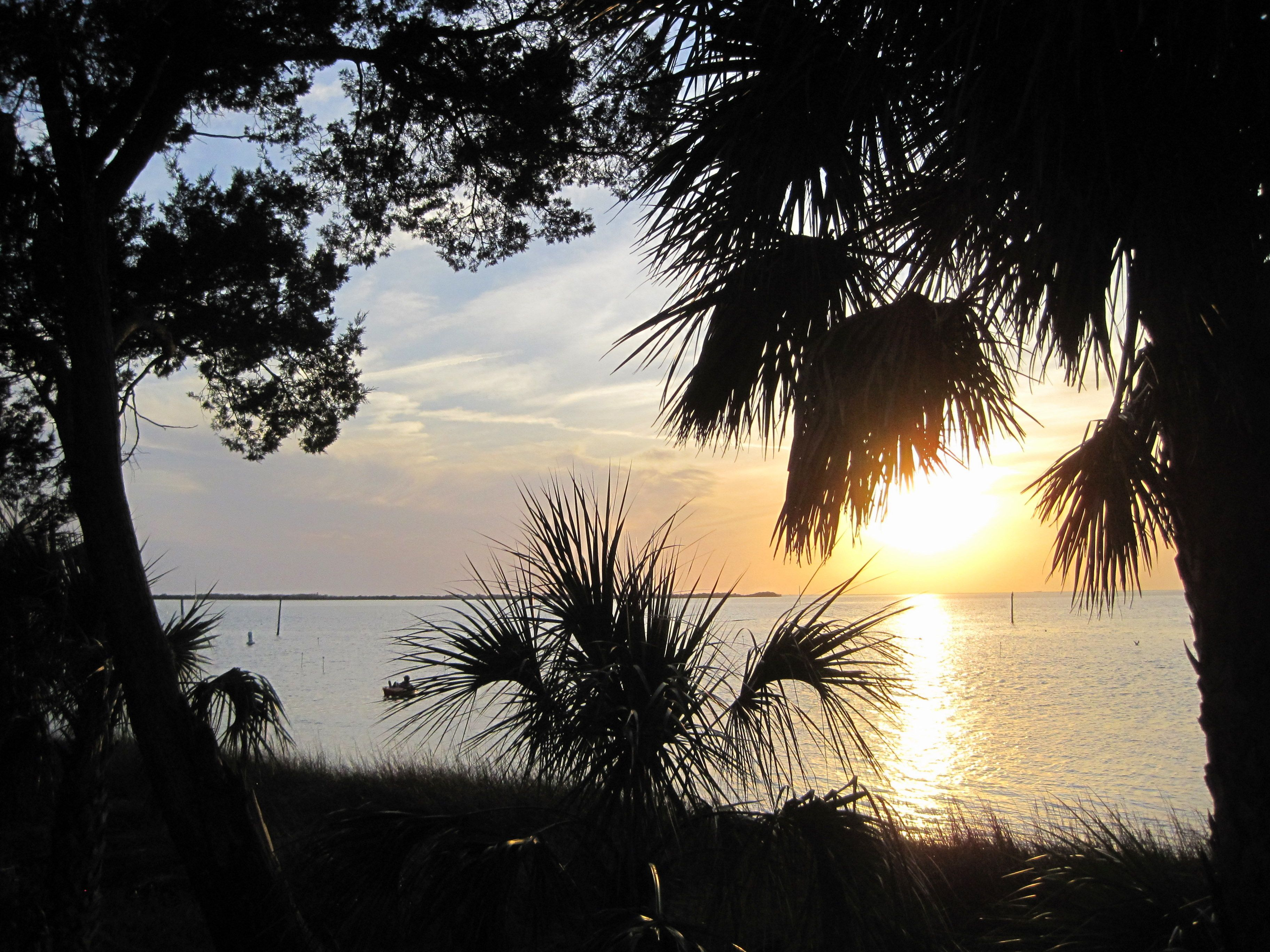 Pine Island Beach Hernando County Florida The Girls And I Spent Many A Great Day Here