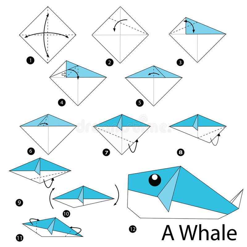 instructions tape par tape comment faire origami une baleine illustration de vecteur image. Black Bedroom Furniture Sets. Home Design Ideas