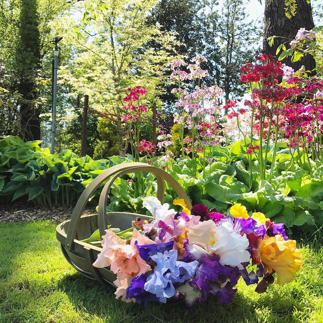 This Beautiful Landscape In Salem Oregon Balances Classical And Contemporary Design Welcome With Warm Encl Luxury Landscaping Cottage Garden Landscape Design