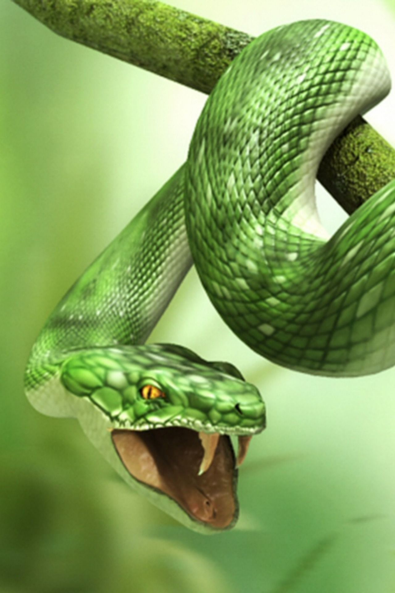 Pin By Greg Indica On Reptiles And Amphibians Snake Snake Wallpaper 3d Wallpaper For Mobile