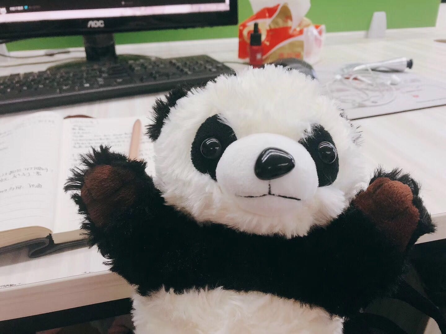 I heard that people all over the world love pandas. Is