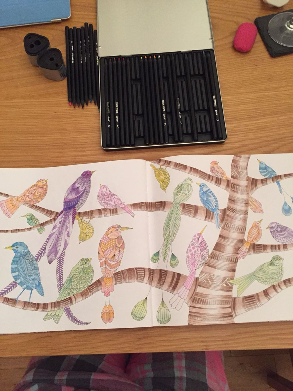Completed Double Page Bird Colouring Millie Marotta