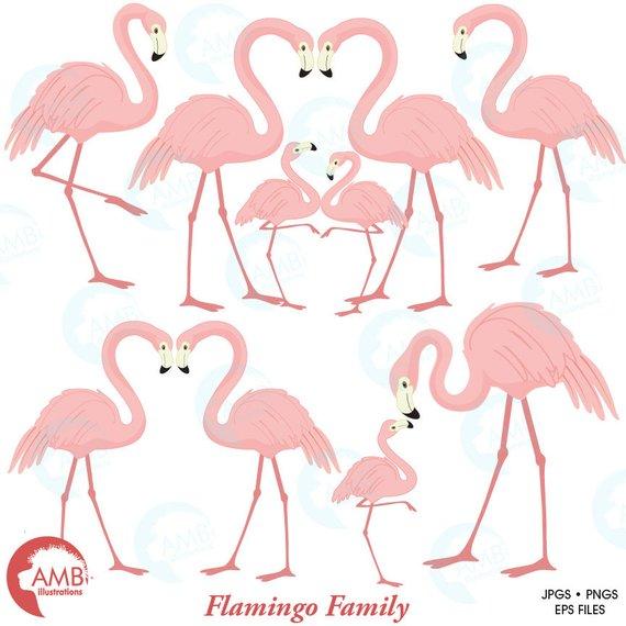Watercolor Portrait Tropical Flamingo Birds