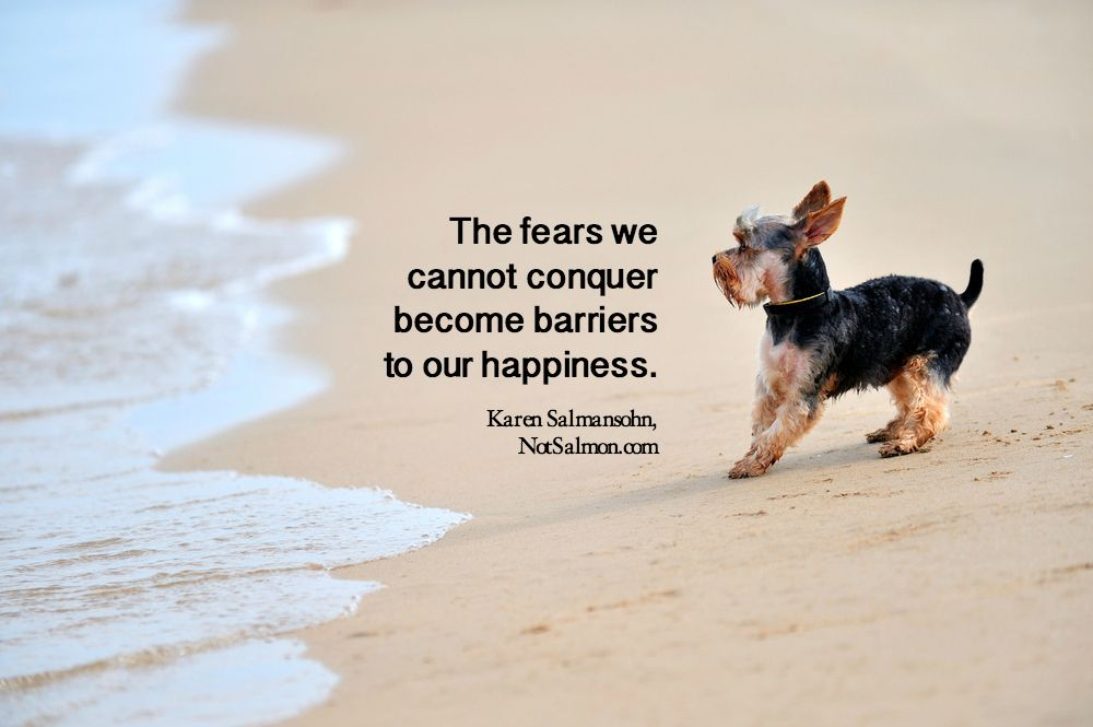 10 Uplifting Courage Quote About Conquering Your Fear Brave Essay On