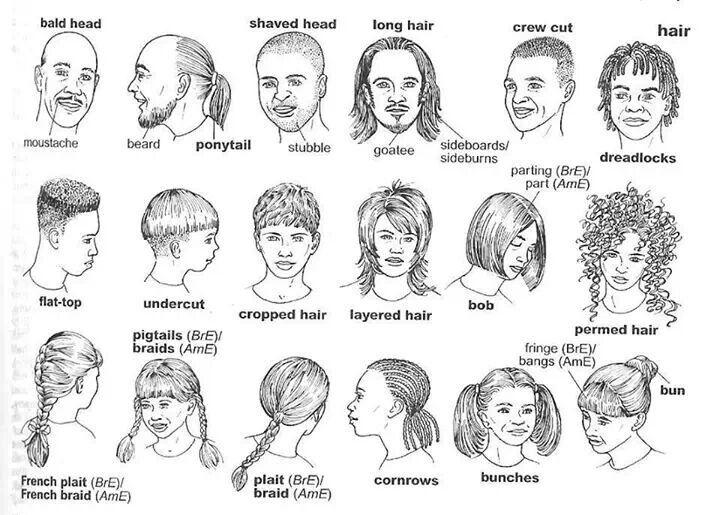 Hairstyle Vocabulary | Learning English! | Pinterest | English and ...