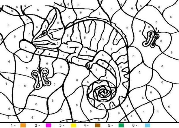 Animal Color By Number Coloring Pages Chameleon Vogel Malvorlagen Malvorlagen Tiere Malen Nach Zahlen Kinder