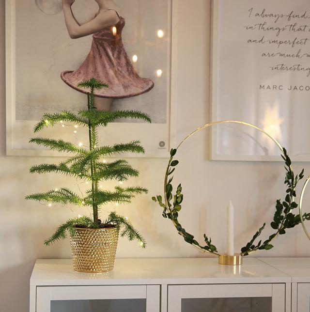 Jag och sambon har möblerat om halva huset idag, hittar inte en perfekt möblering i vårt vardagsrum och har kommit fram till att vi nog får köpa ett nytt hus  (nja, inte riktigt..) ________________________________________________________ #angelicashem #veespeers #rumsgran #mässing #klong #klonggloria #svenskttenn #ljusslinga  #inredning  #hem #heminredning #inredningsinspiration #inredningsinspo #hemma #interior #inredningsdetaljer  #lifestylebyl #mykindoflikeinspo #designbymadde #newhome...