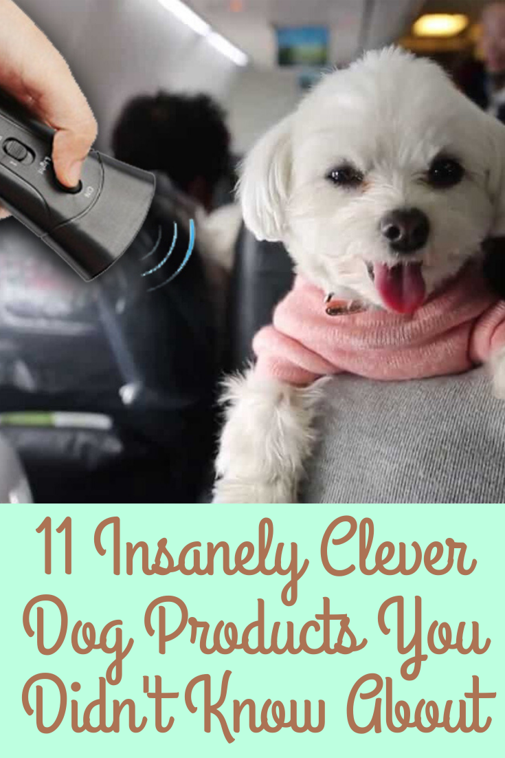 11 Insanely Clever Dog Products You Didn T Know You Needed Clever Dog Dogs Clever