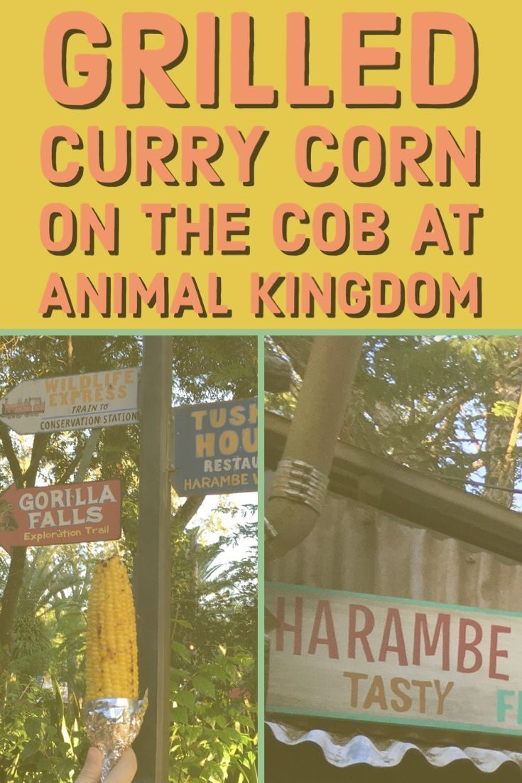 Grilled Curry Corn on the Cob at Animal Kingdom - Theme Park Anthropologist #animalkingdom
