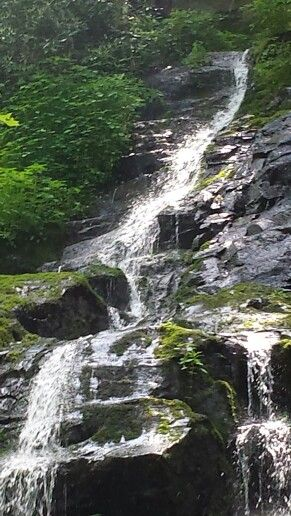 Hen Wallow Falls.  Great Smokey Mountains National Park TN