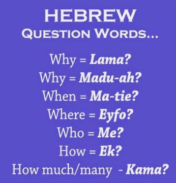 It's never too late to start learning Hebrew. #hebrew #languagelearning #languages #learn #learnhebrew