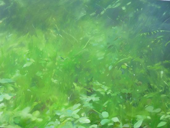 Meadow, Oil on canvas, 2014