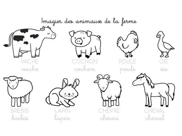 Coloriages les animaux de la ferme 8 la ferme pinterest animaux de la ferme ferme et - Dessin de ferme ...