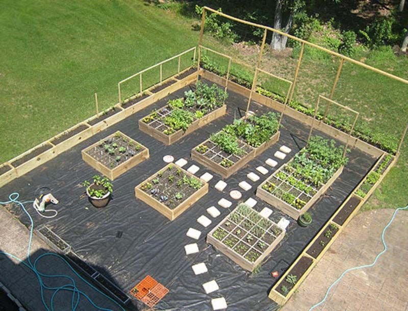 Small Vegetable Garden Mapping Design and Layout (With ...