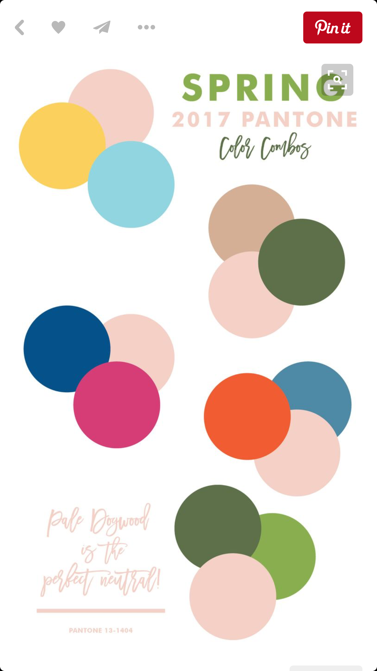 Pantone spring 2017 color trends report erika firm color pantone spring 2017 color trends report erika firm color palettes pinterest pantone spring and color inspiration nvjuhfo Image collections