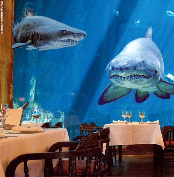 8 Underwater Hotels You Will Not Believe Underwater Hotel Underwater Restaurant Underwater