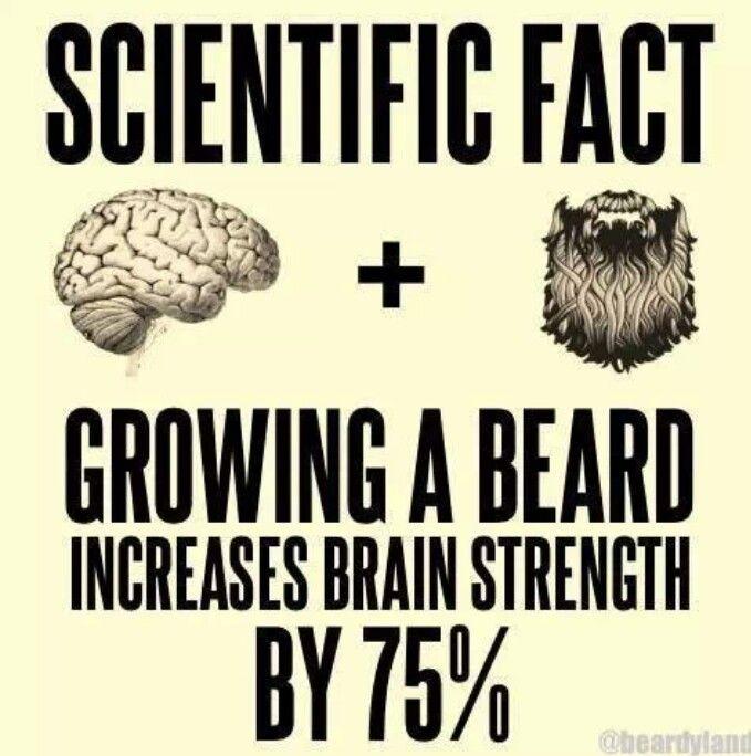 how to grow a man beard