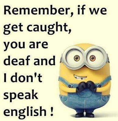 If We Get Caught Minion Quotes Funny And Sayings Cute Image