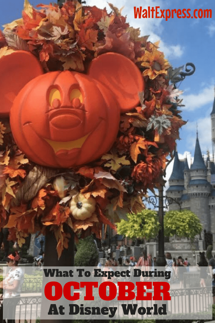 What To Expect During A Halloween Cruise With Carnival: What To Expect In Disney World During The Month Of October
