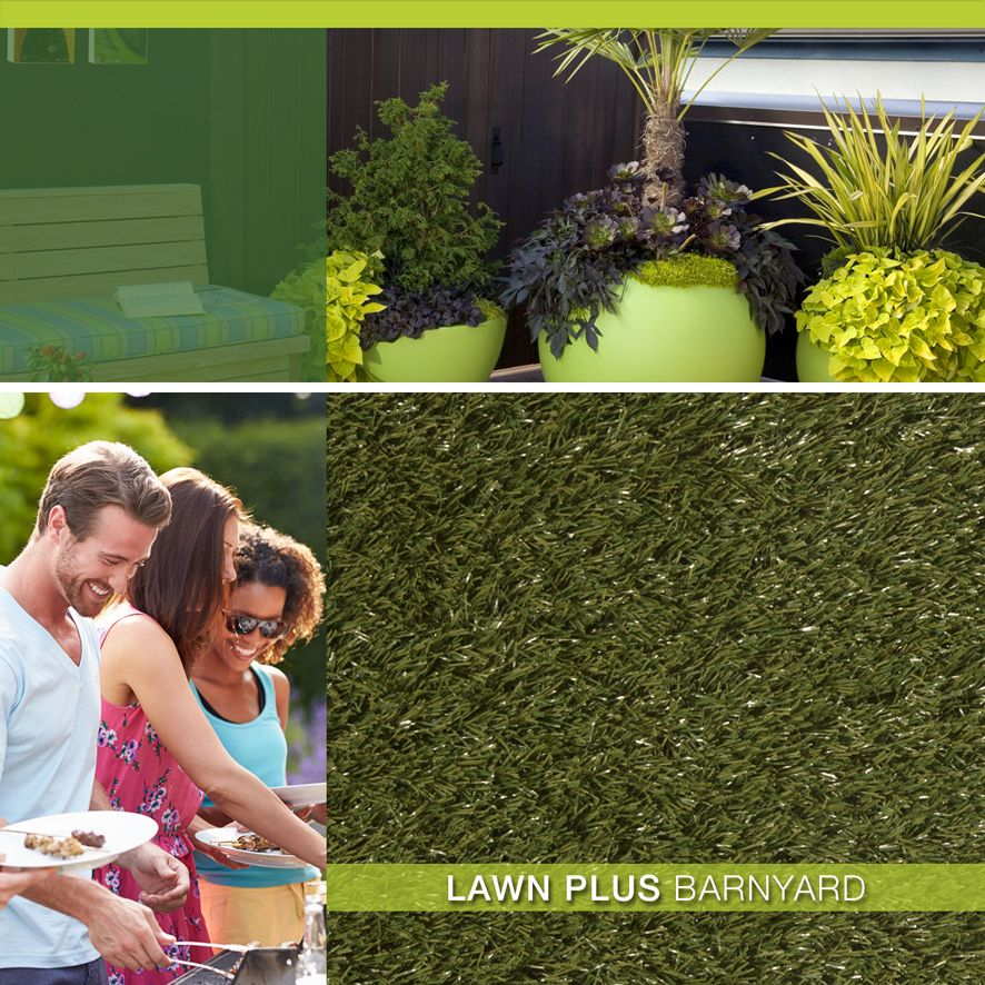 Lawn Plus - Barnyard