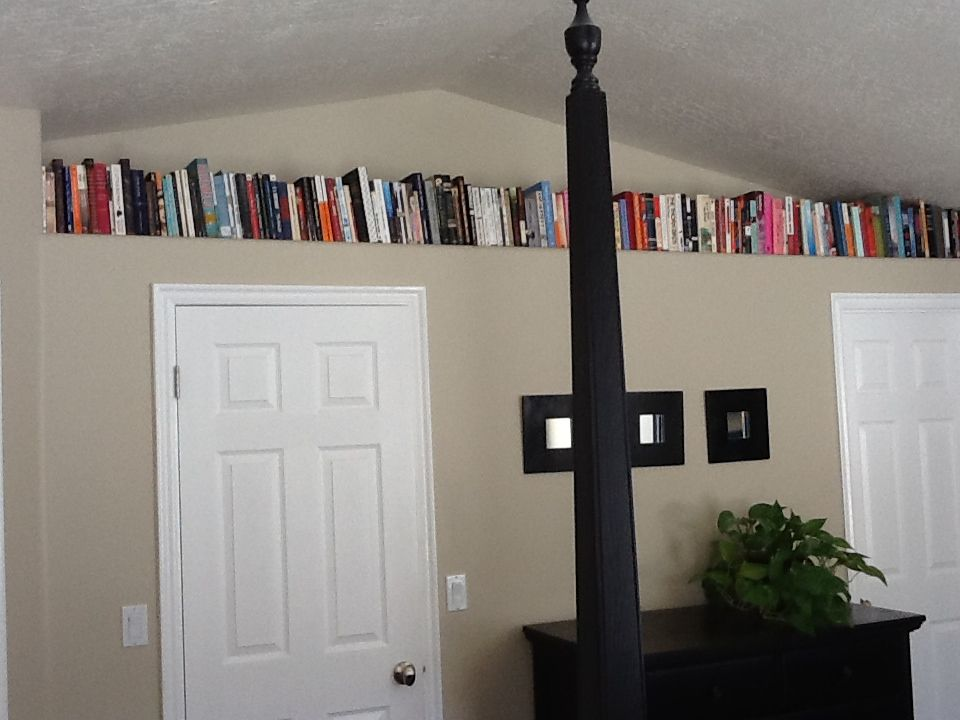 Decorating with Books | Plant shelves, Shelves and Plant ledge
