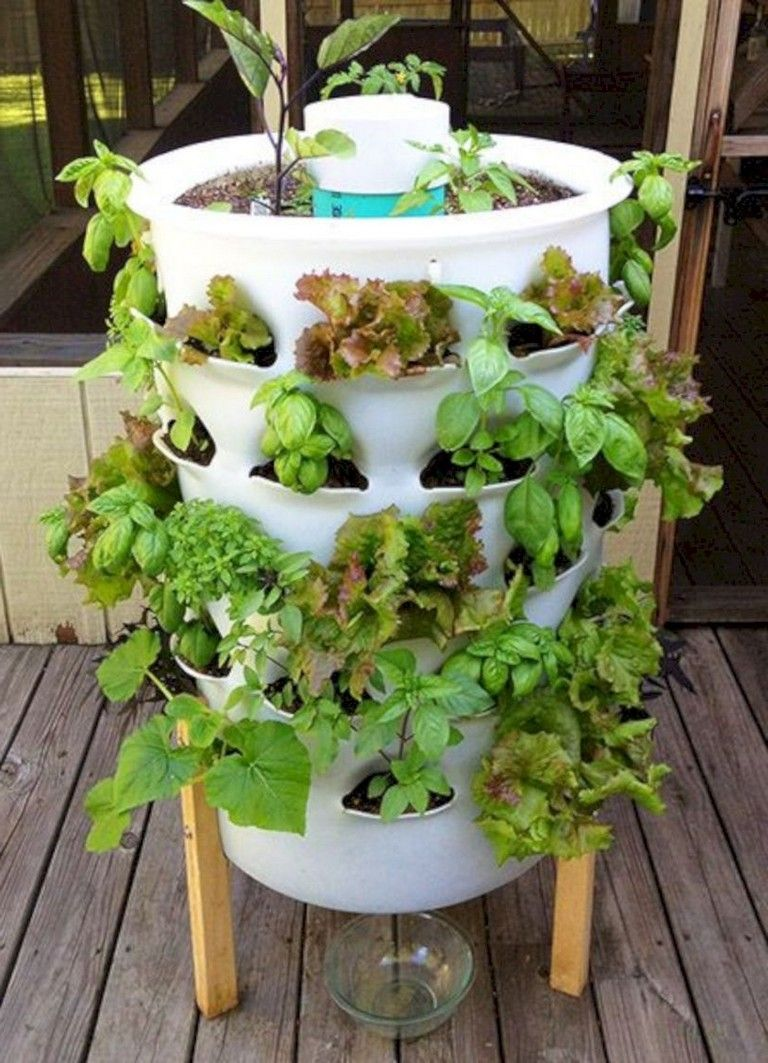 30 Diy Hydroponic Gardens To Your Small House 640 x 480