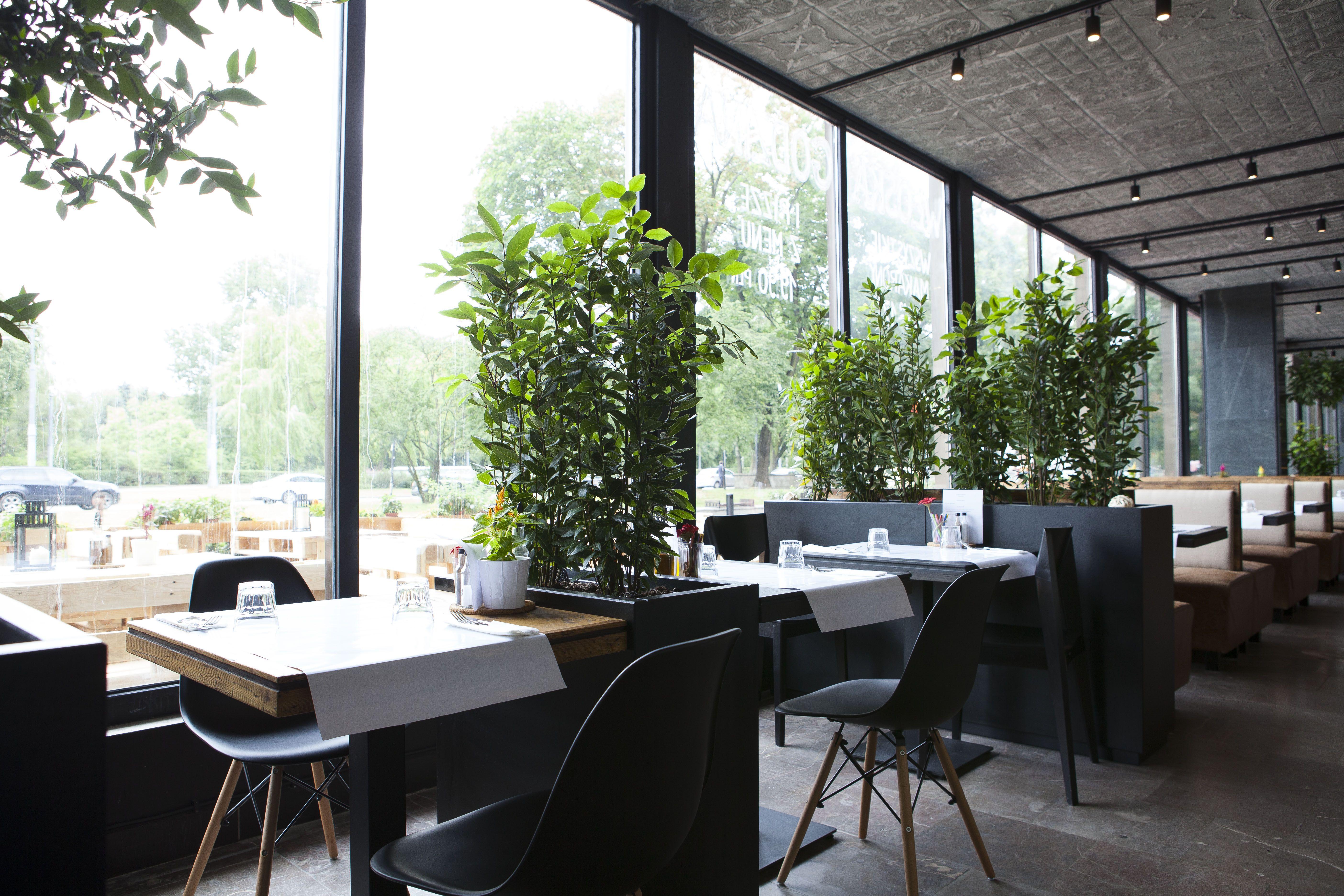 Restauracja Si Si Ristorante Amp Coctail Bar Si Restauracje Warszawa Restauracja Plac Bankowy Wloska Restauracja Pizza Swieze Ma Home Decor Decor Home