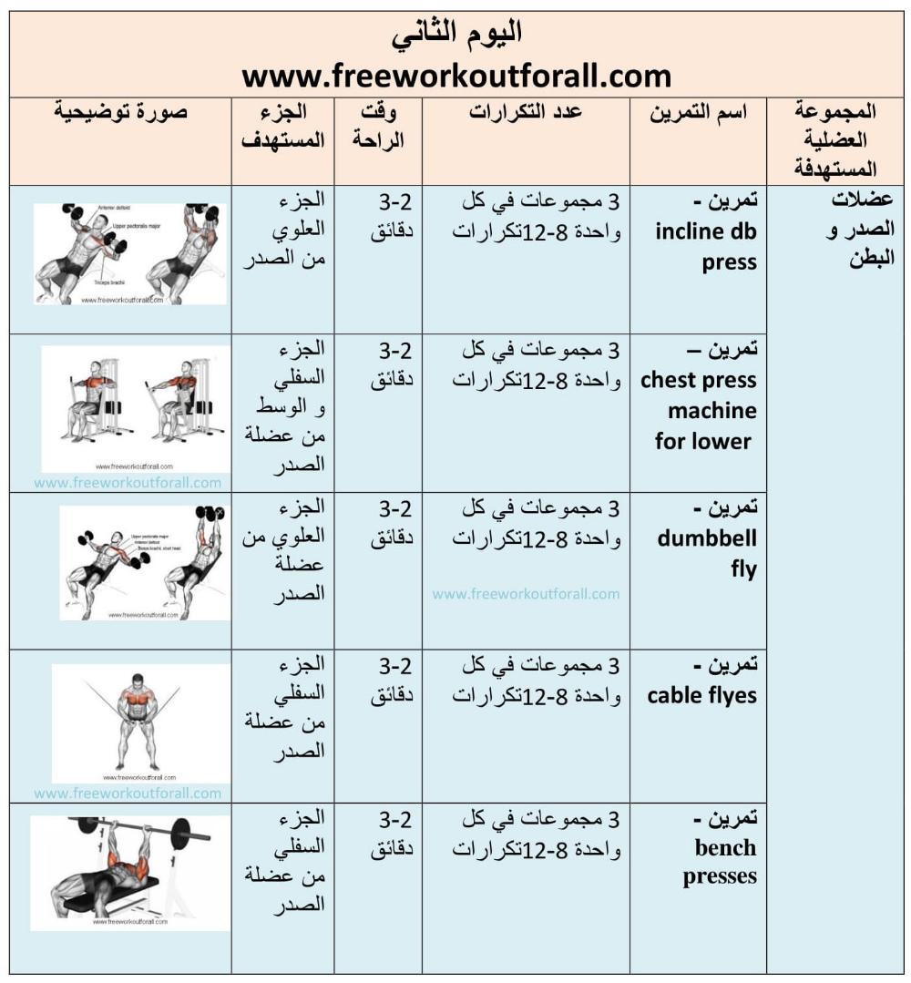 افضل جدول تمارين كمال الاجسام 5 ايام لسنة 2020 Workout Schedule Workout Vector Free Download