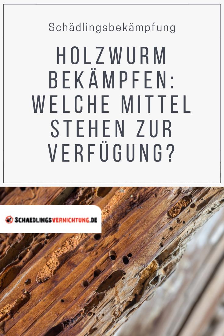 Holzwurm Bekampfen Welche Mittel Stehen Zur Verfugung Holzwurm Holzwurmer Bekampfen Holz
