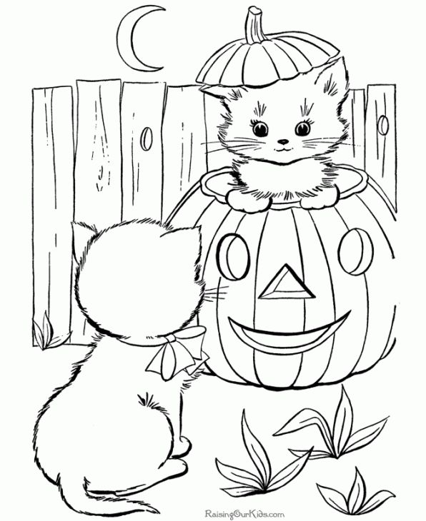 Two Kittens Staring Each Other On Halloween Night Coloring Page