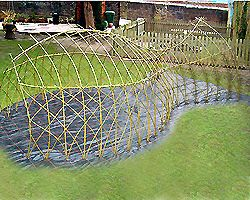 whale of a time..living willow structure