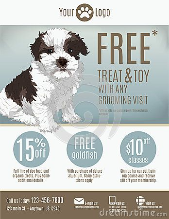 pet-store-flyer-template-groomer-discount-coupons-advertisement - coupon flyer template