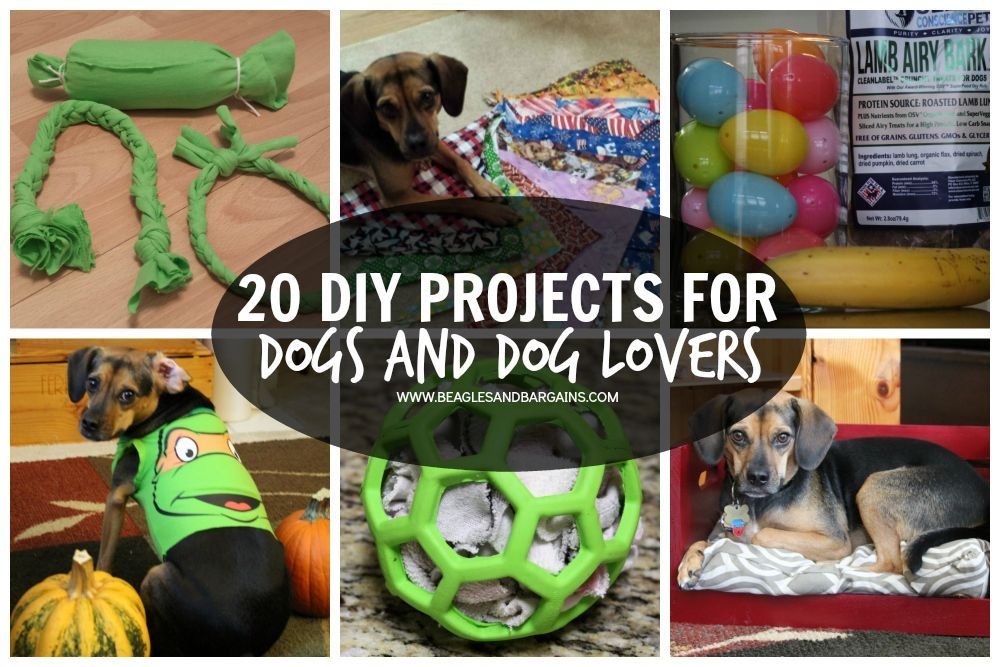 Diy Projects Are Super Fun Easy To Customize To You And Your Dog And Can Help Save You Money See 20 Of Our Fav Dogs Diy Projects Diy Dog Stuff Easy