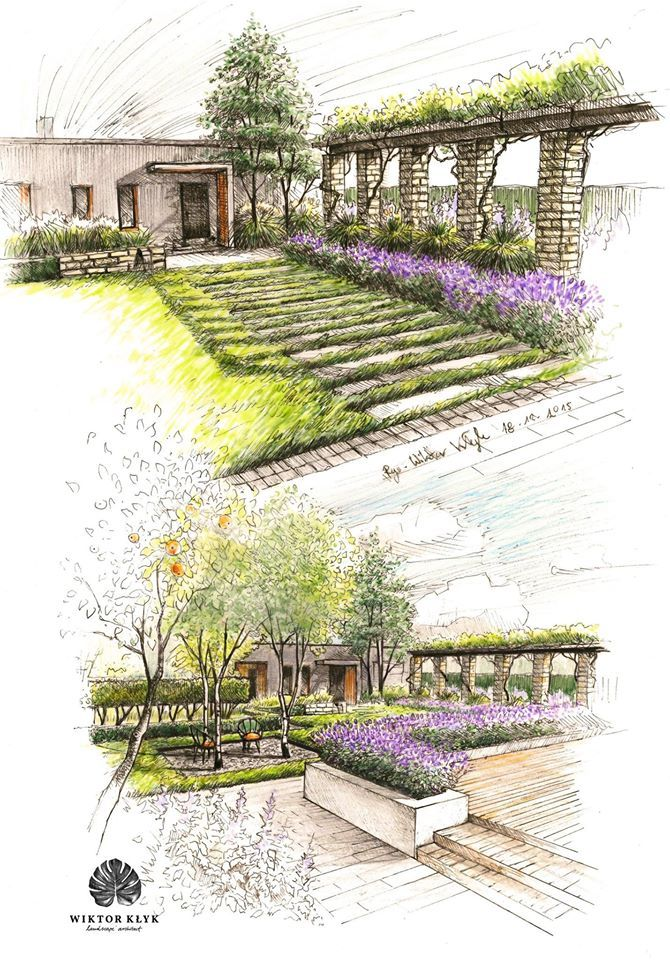 Landscape Architecture Drawings landscaping trees | the diagram shows different forms of trees