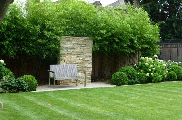 bambus im deutschen garten hohe pflanze bietet sichtschutz garten pinterest sichtschutz. Black Bedroom Furniture Sets. Home Design Ideas
