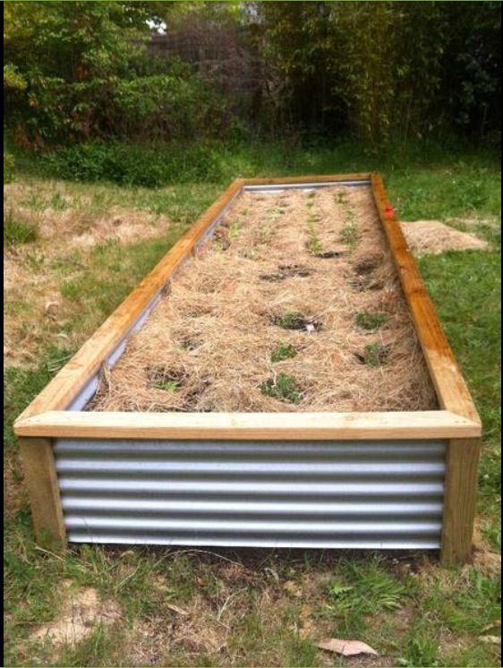 Corrugated Iron Planter Box Copied From Gumtree Com Au Raised Garden Bed Plans Garden Beds Raised Garden