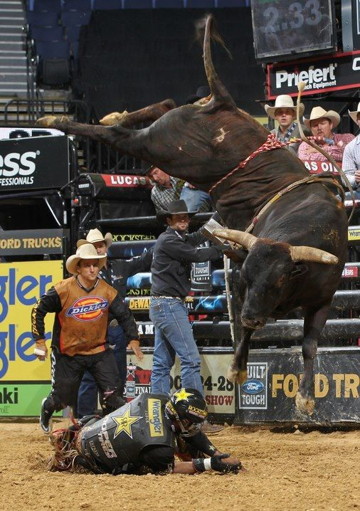 PBR---That's Asteroid for ya! | And they call the thang a ...