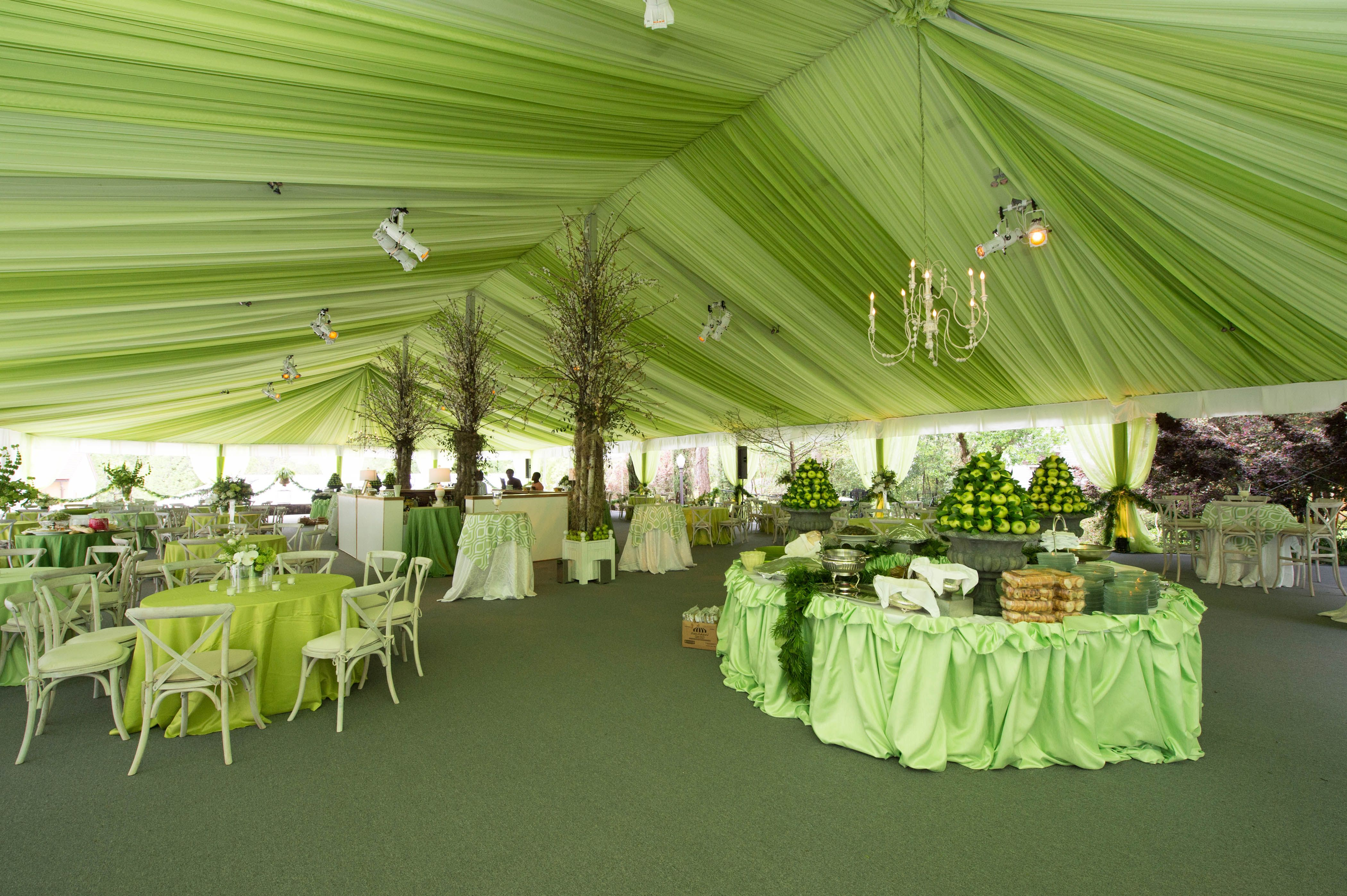 This Wedding Will Leave You Green With Envy Tent Provided By Chattanooga Tent Event Solutions Tent Rentals Event Solutions Tent