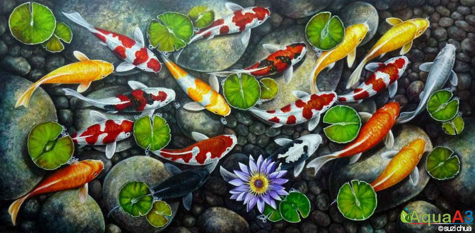 Koi Cyprinus Carpio By Suzi Chua ภาพวาด ปลาคราฟ ปลา
