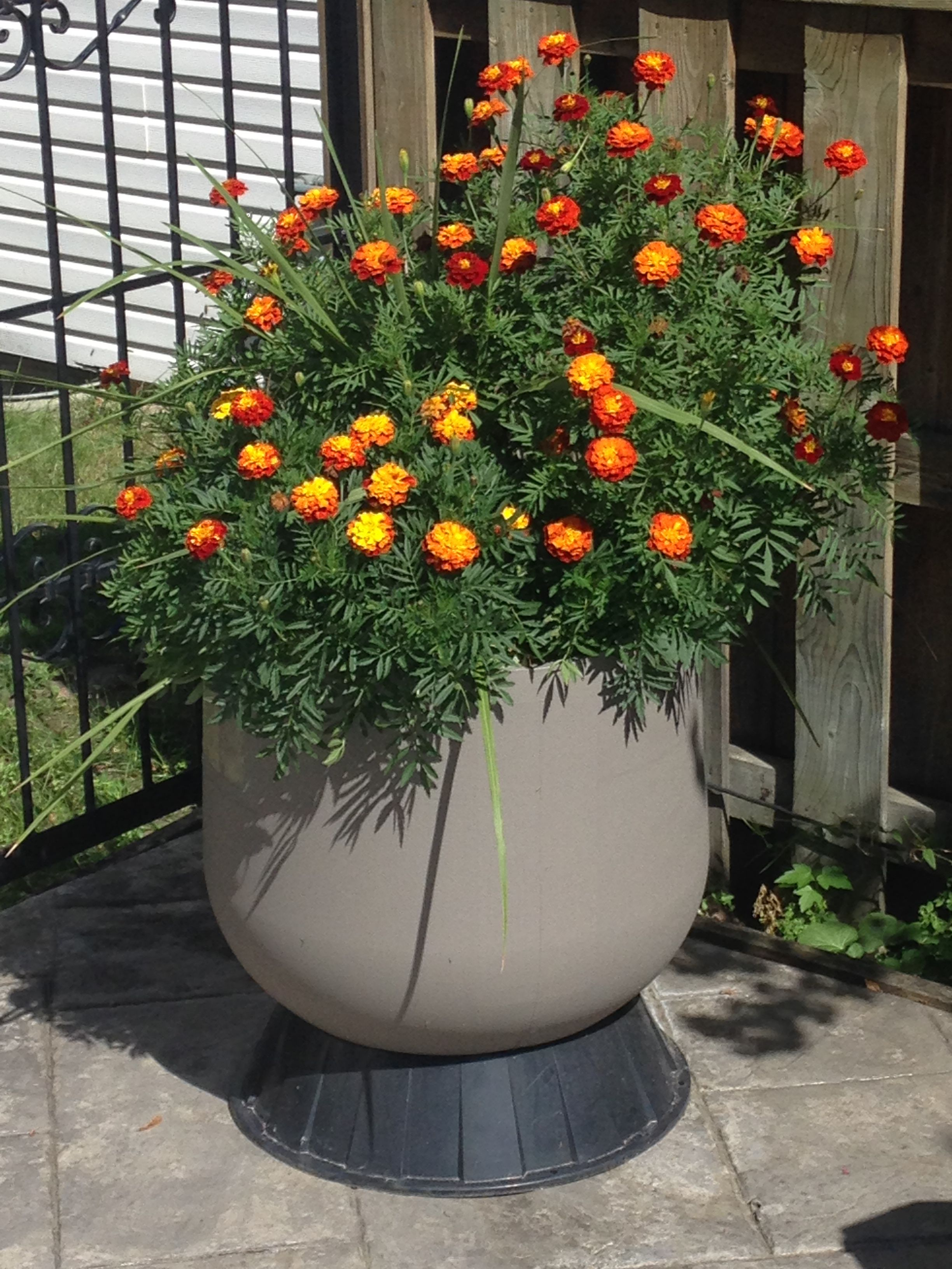Recycled Pool Sand Filter Into A Flower Pot Sand Filter For