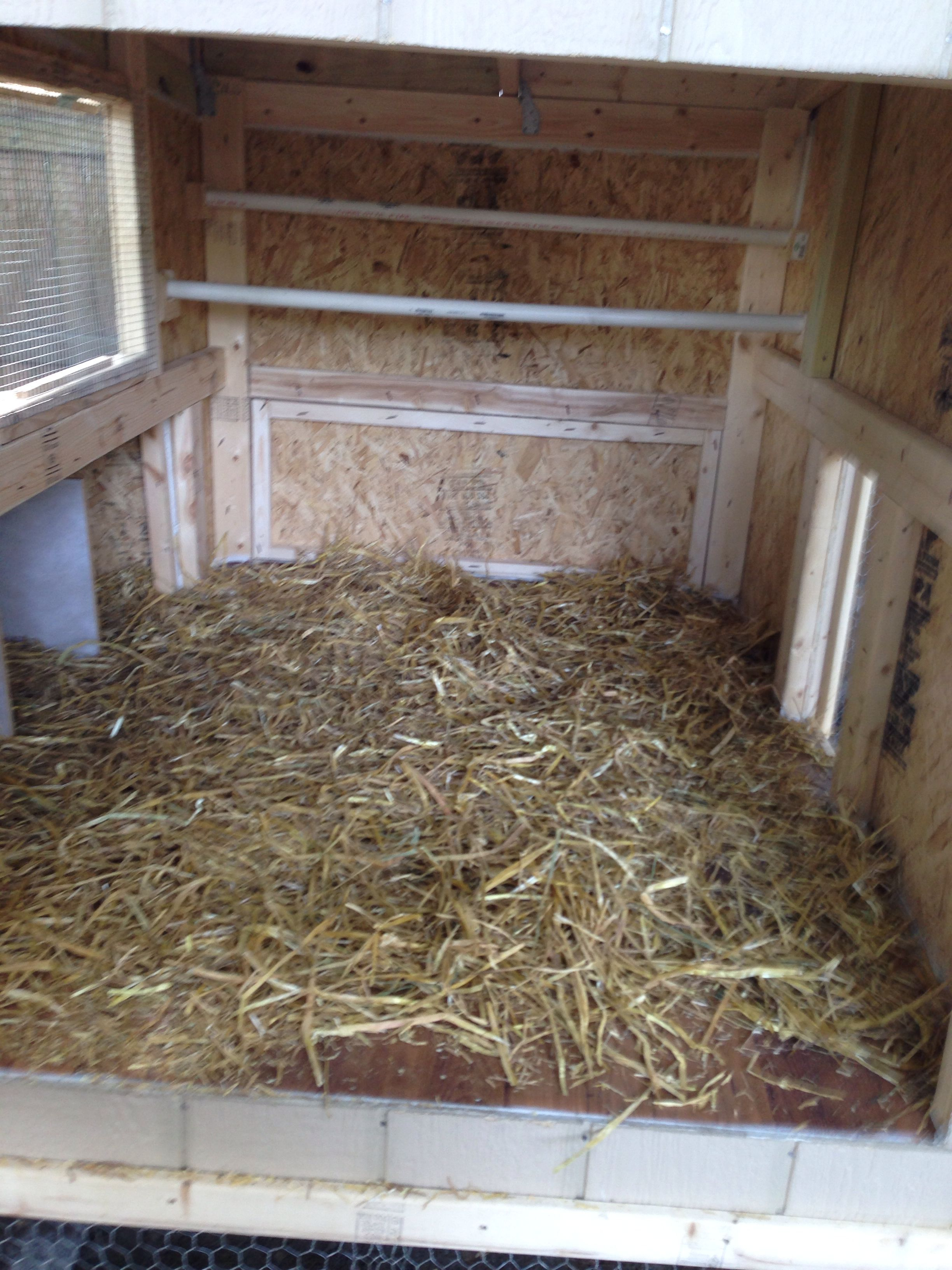 Roosting Bars Made From 3 4 Pvc Pipes Chicken Roost Diy